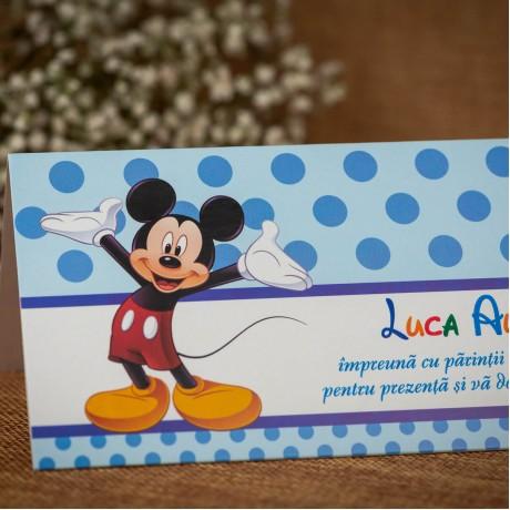 Plic de bani Wyatt Mickey Mouse